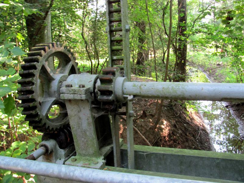 Überall findet man Gelenkwellen, selbst im Wald.