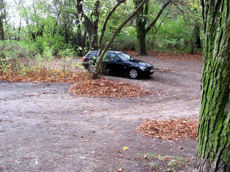 Parken im Wald